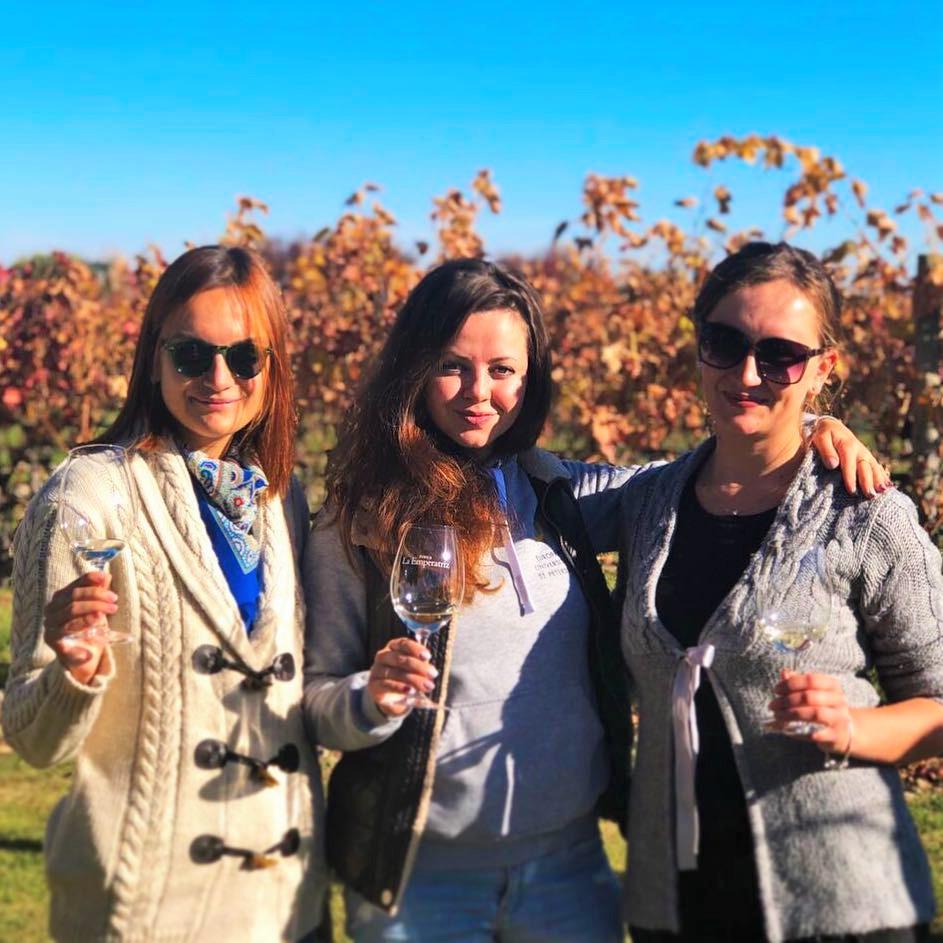 wine tasting french riviera